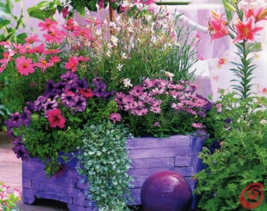Vrt v lon kih drugi del dom in stil for Fiori per esterno