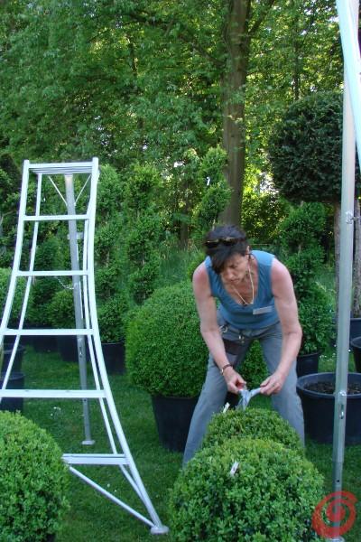 Gli espositori alla fiera di giardinaggio di Beervelde