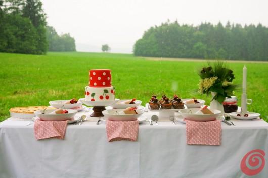 Il prato e la fantastica torta alle ciliegie
