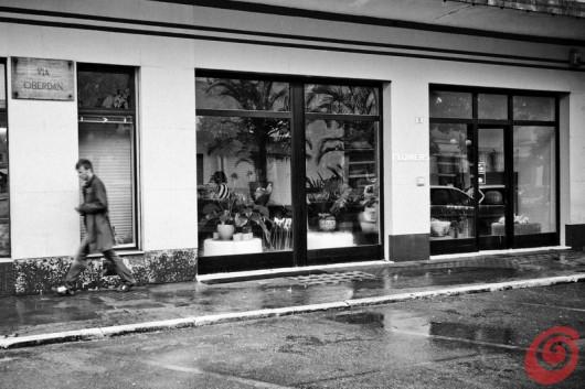 Il negozio di fiori di Jakoncic