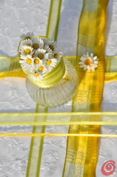 Le margehrite per gli addobbi della tavola decorata con i fermatovaglie colorati