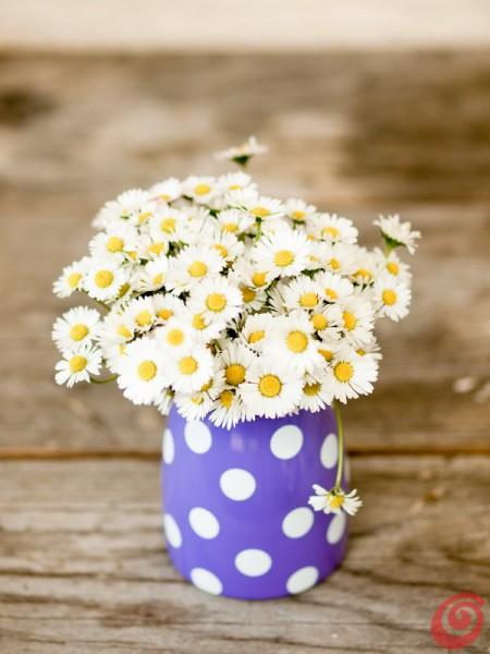 La decorazione floreale con le margheritine e il vaso a pois