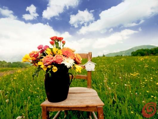 La decorazione con la sedia rustica sta bene in ogni ambiente