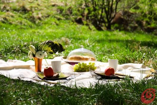 Un elegante picnic in mezzo al verde.