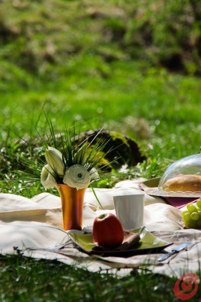 La tovaglia bianca, della frutta, un vasetto di fiori delicati, dei piatti eleganti: un picnic elegante per appagare i sensi!