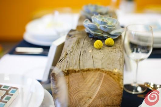 Il blu, il giallo e il legno antico - uno sfondo interessante per un'echeveria che della crisi ha fatto il suo modus vivendi.