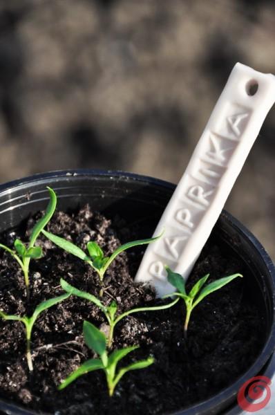 Idee per il giardinaggio, realizzare segnapiante fai da te