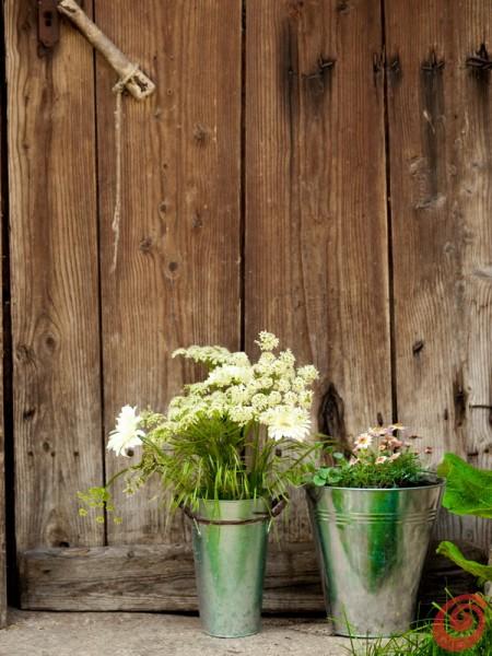Vasi, fiori e decorazione