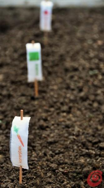 Etichette segnapiante fai da te per la verdura e per l'orto