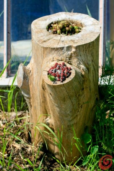 Le decorazioni per il giardino quelle fai da te casa e trend - Decorazioni per feste fai da te ...