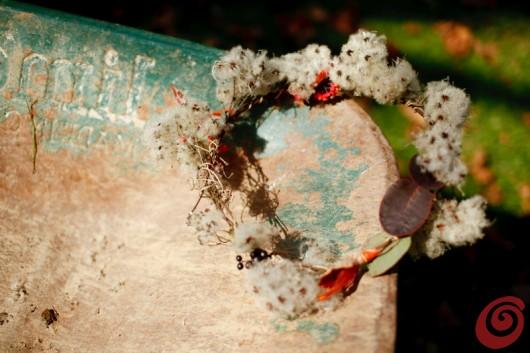 immagini autunnali: boschi, dolci, caldarroste, sole e vin brulè