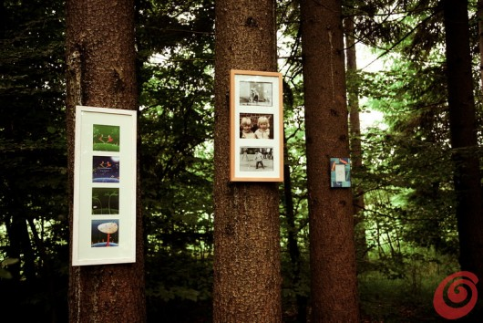 il servizio fotografiche con le cornici in mezzo al bosco
