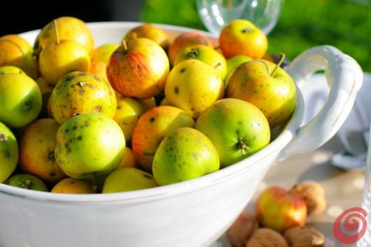 Ideja za jesensko dekoracijo mize - jabolka