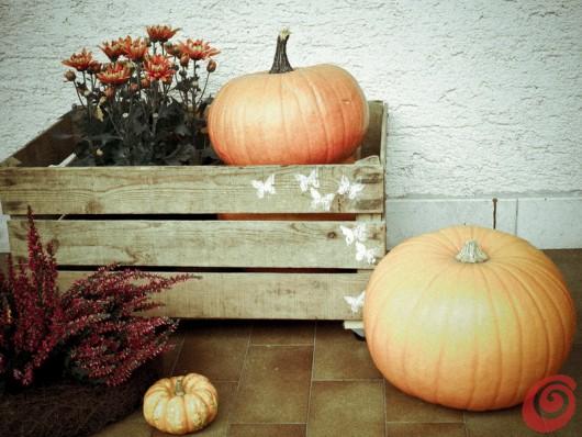 La cassetta in legno vintage di recupero: la decorazione con le zucche, i crisantemi e l'erica