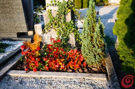 Zasaditve grobov