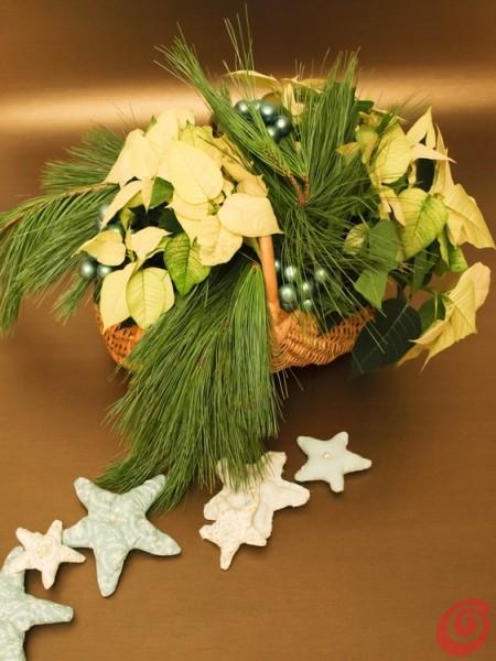 decorare soggiorno e corridoio per le feste con le stelle di natale