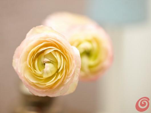 il vaso con i materiali naturali, un'idea fai da te per decorare l'inverno