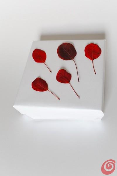 Confezioni regalo in bianco e scarlatto, utilizzando materiali naturali, carta opaca e nastro di velluto