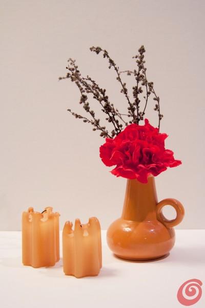 I bouquet e le composizioni floreali del mese: i garofani