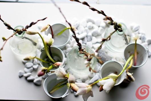L'elleboro o rosa di natale, un fiore da giardino e da vaso