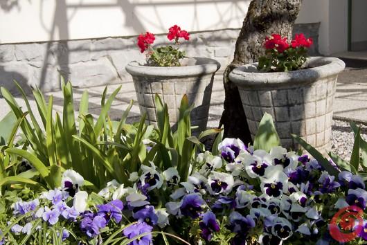 Un giardino di campagna che ci riporta indietro nel tempo. Il giardino della casa del poeta Srečko Kosovel.