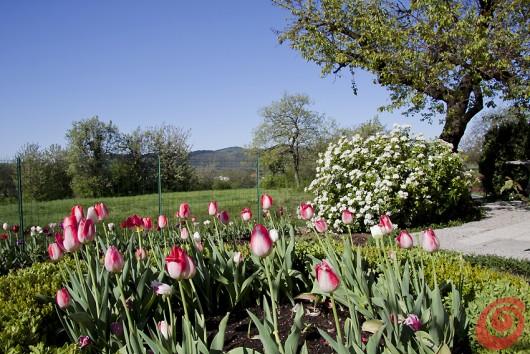 Un giardino di campagna allantica u2013 casa e trend