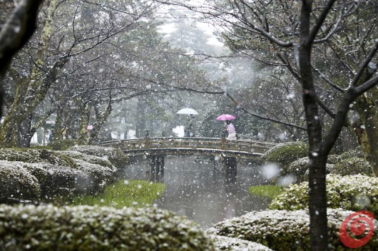 concorso internazionale di fotografia sul tema dei giardini è dedicato ai motivi di giardinaggio, ai giardini, alla fotografia botanica ecc. Viene organizzato da Galpa Ltd. in collaborazione con Royal Botanic Gardens Kew in Gran Bretagna - giardino giapponese innevato