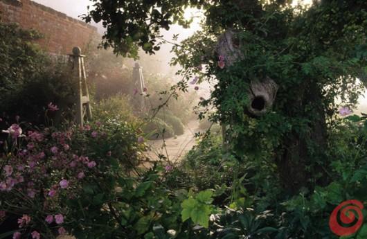 concorso internazionale di fotografia sul tema dei giardini è dedicato ai motivi di giardinaggio, ai giardini, alla fotografia botanica ecc. Viene organizzato da Galpa Ltd. in collaborazione con Royal Botanic Gardens Kew in Gran Bretagna - giardino romantico e selvaggio