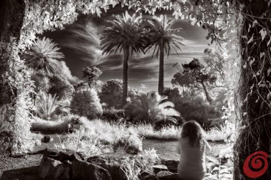concorso internazionale di fotografia sul tema dei giardini è dedicato ai motivi di giardinaggio, ai giardini, alla fotografia botanica ecc. Viene organizzato da Galpa Ltd. in collaborazione con Royal Botanic Gardens Kew in Gran Bretagna - giardino