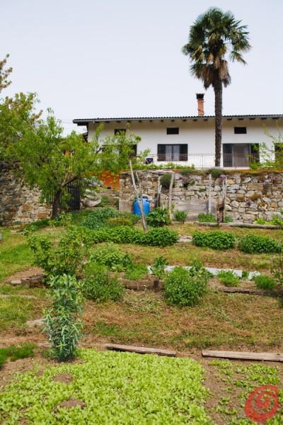 Un giardino e un orto di campagna nel Collio goriziano