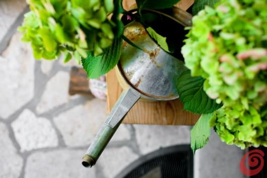 Decorare l'ingresso con le zucche verdi