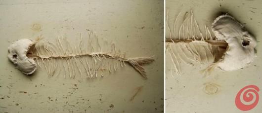 I pesci e le piante di stoffa, il cucito creativo di Tamar Morgendorff.
