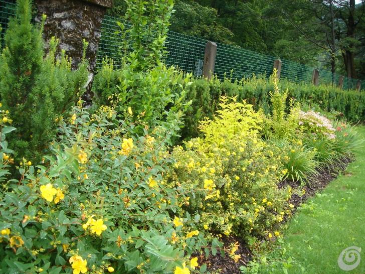 Un giardino per una villa d epoca casa e trend for Piante perenni da bordura