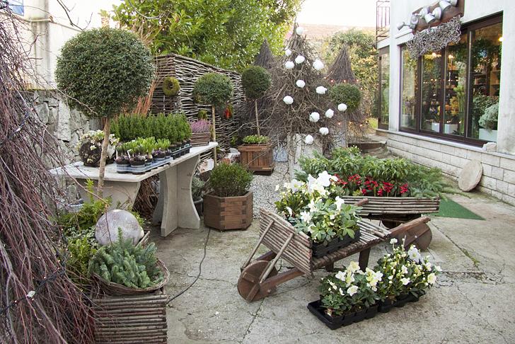 Le decorazioni per l 39 avvento di a d a casa e trend for Alberelli da esterno