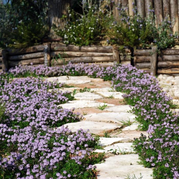 Un giardino mediterraneo col mare sullo sfondo