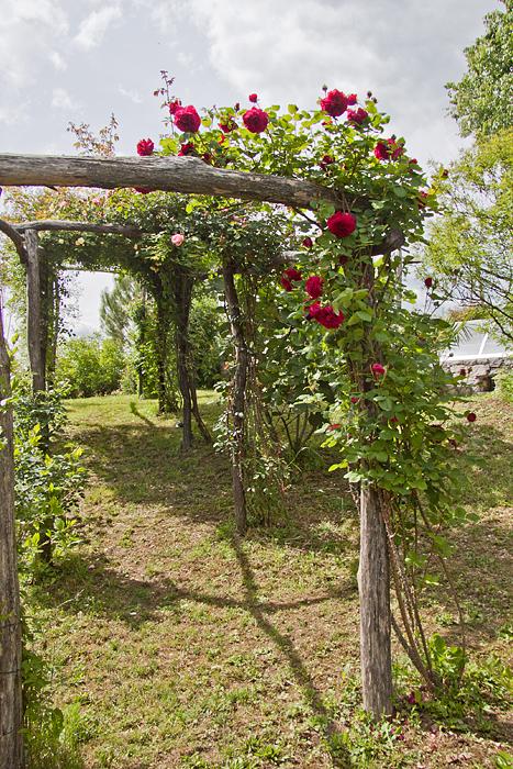 Il fascino del legno in giardino casa e trend - Terrazzamenti giardino ...