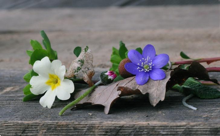 pomladni_romanticni_vencek_trobentice_vijolice