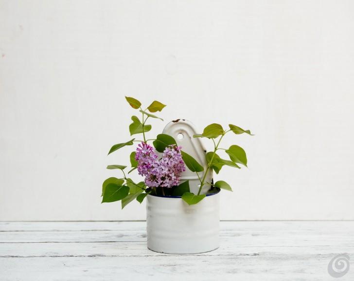 lilla_composizioni_floreali_primaverili_fiori