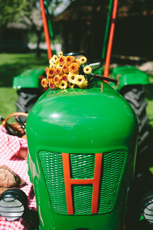 idee-per-picnic-campagna