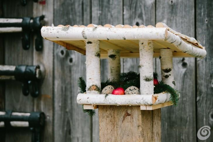 mangiatoie-uccelli-bird-feeder